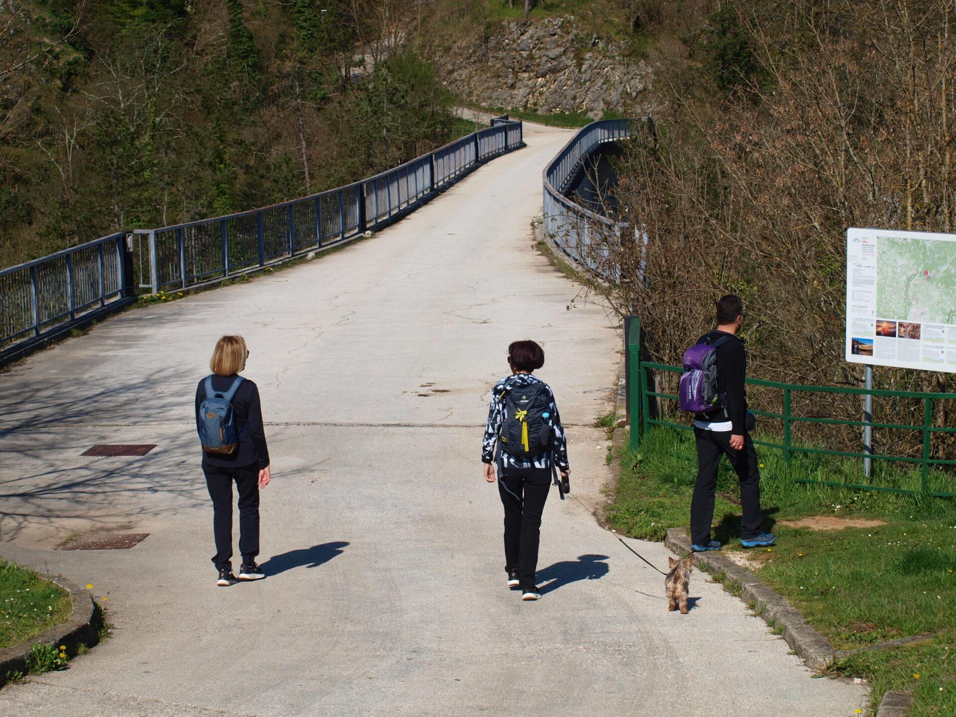 Pazinski most Vršić