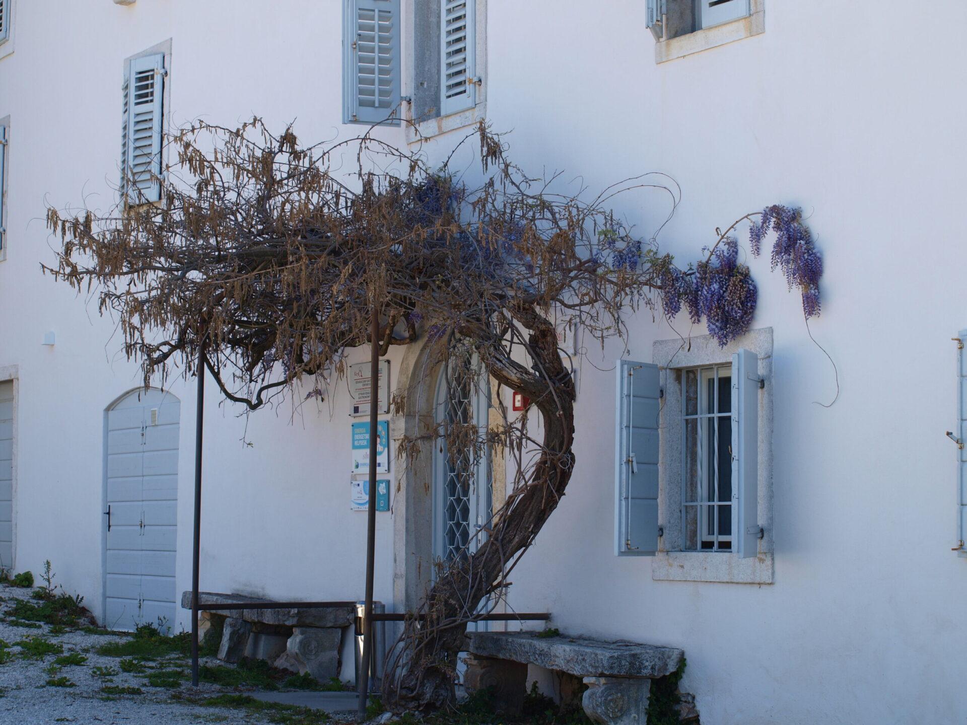 Edukacijski gastronomski centar Istre